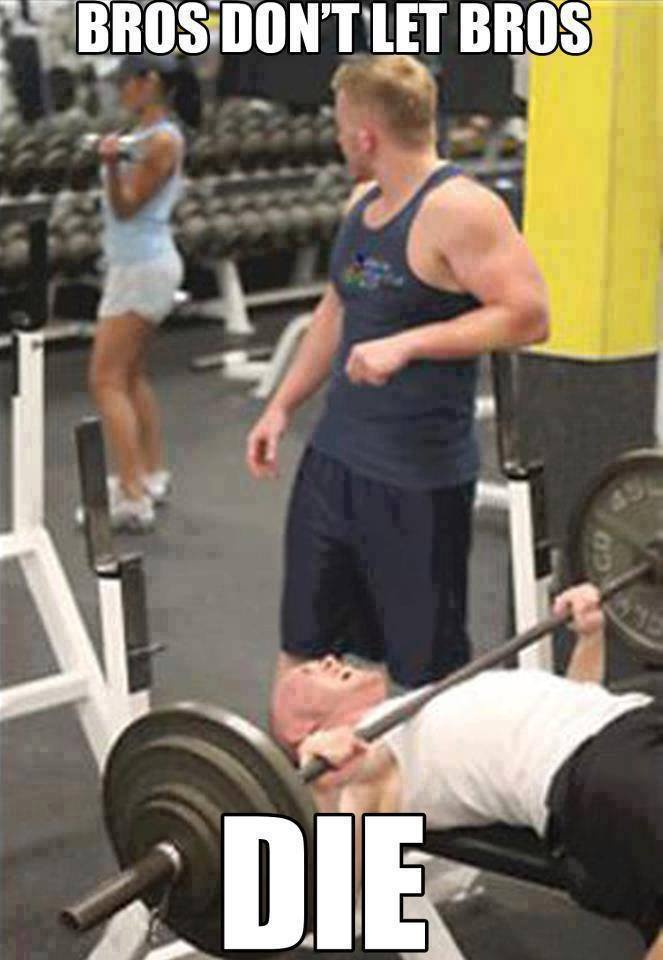 How much do you bench press?-11061328_842815502469673_3848188265651394306_n.jpg