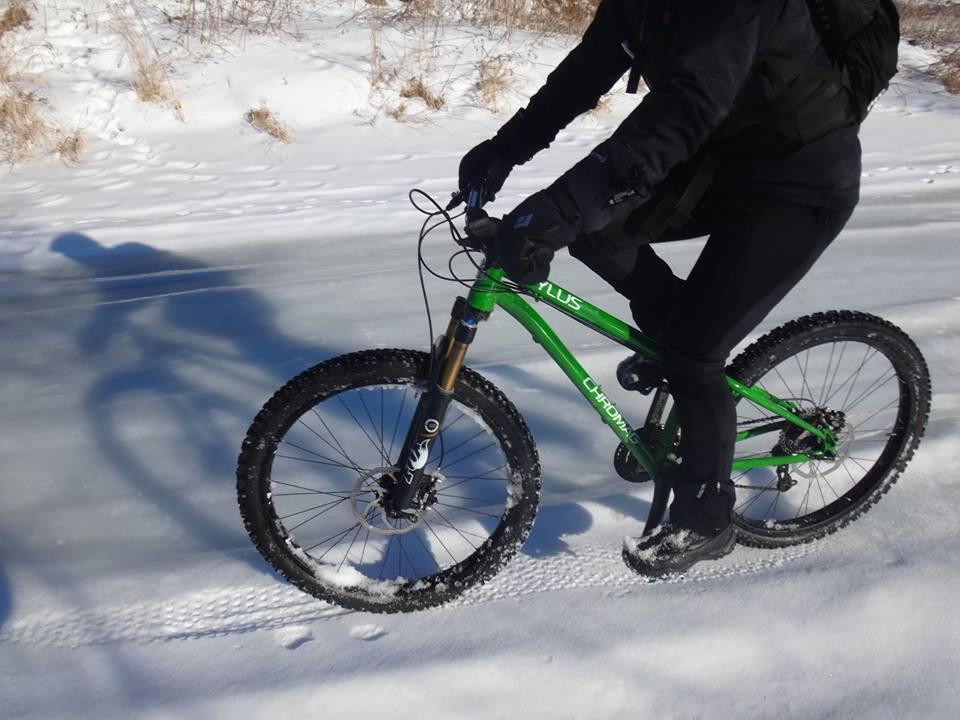 Local Trail Rides-11062697_653189028143442_2572868629275525941_n.jpg