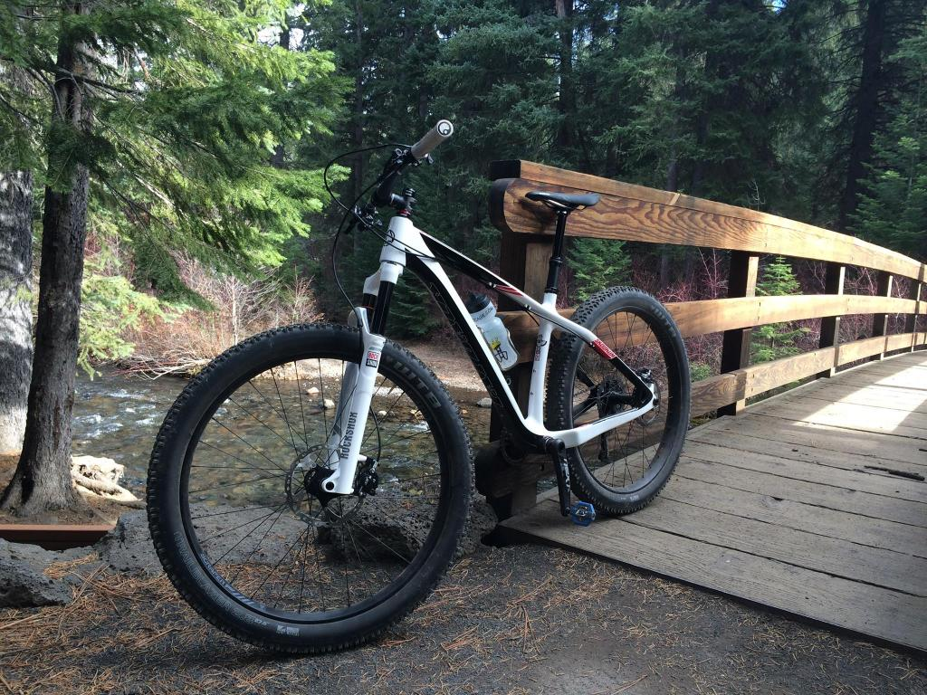 shreddy fun fat bikes?-11225266_805537996234774_7168646301775670872_o.jpg