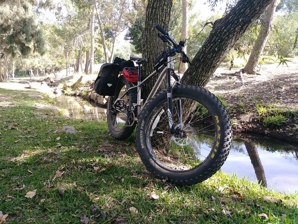 Daily fatbike pic thread-1123171147b.jpg