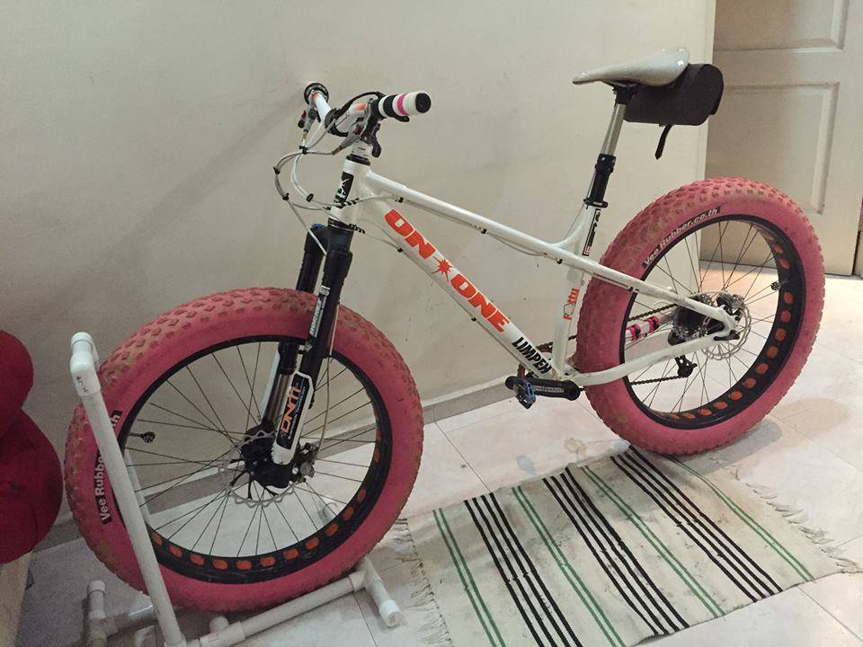 Cheap suspension fork for my fat bike-11265107_10152984137979624_5333756995863421564_n.jpg