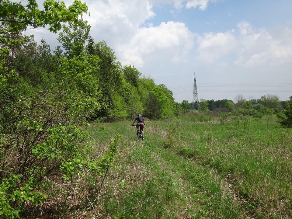 Local Trail Rides-11266693_686925008103177_4941924895270731154_n.jpg