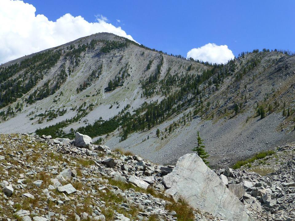 Salmon mountain biking-1157743_10151764293137348_1339996930_n.jpg