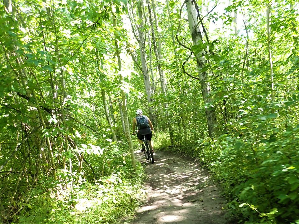 did you ride today?-117315510_2767503096827457_6052749066602341110_o.jpg