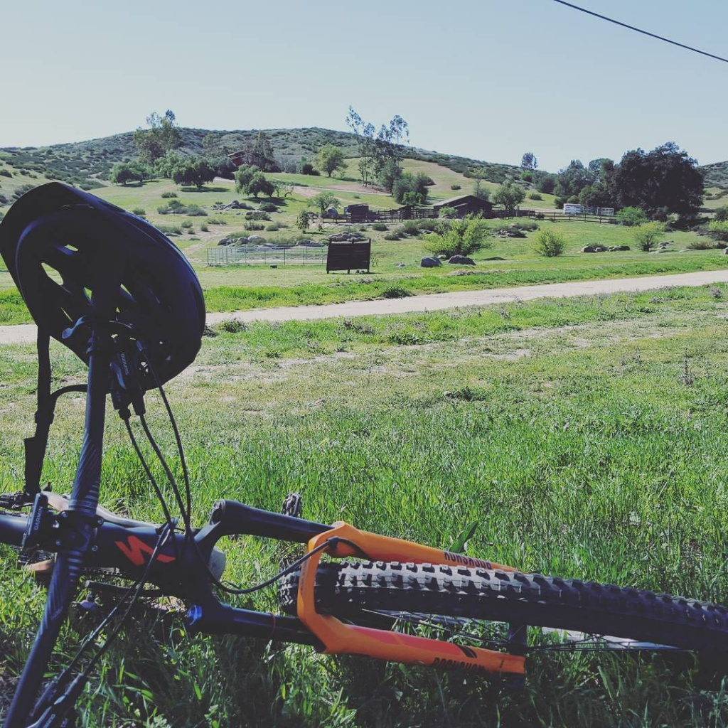 What did You do today on your mountain bike?-11848853_475929309284329_450354166_n.jpg