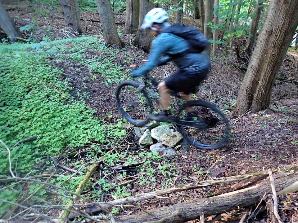 Local Trail Rides-118627358_2790115354566231_4095213084512772820_o.jpg
