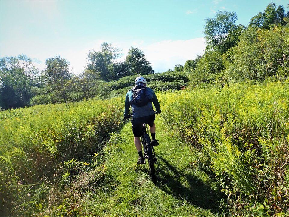 Local Trail Rides-118648041_2790124444565322_4571510497932382897_o.jpg