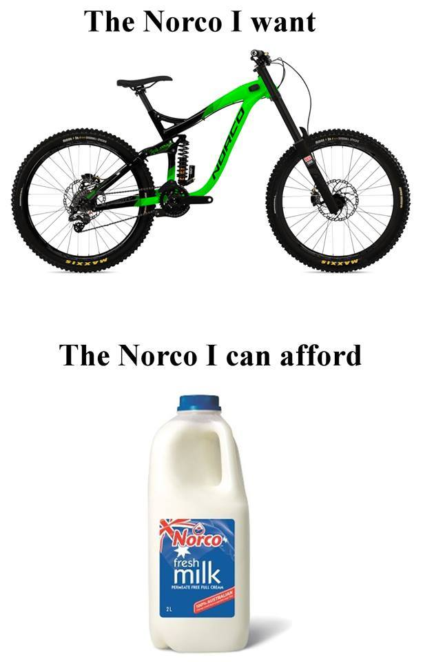 Who Rides A Norco?-11885375_401971183333690_7793448336166700023_n.jpg