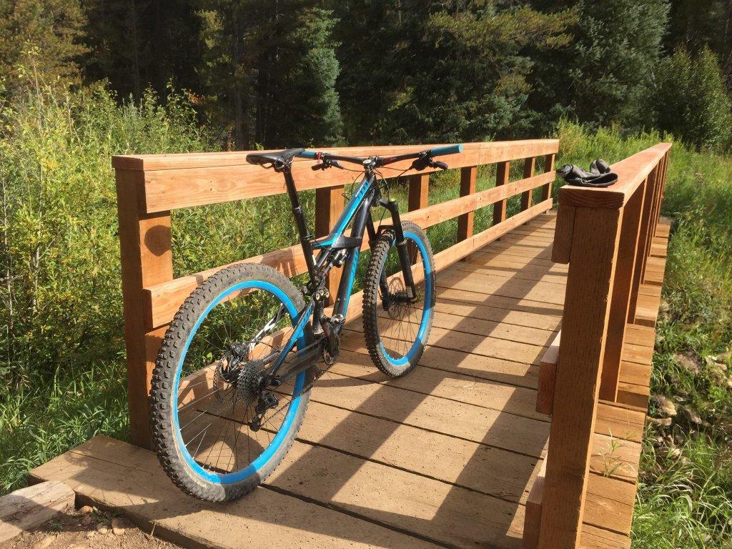 bike +  bridge pics-11887556_10100659363507438_2677603154954861985_o-copy.jpg