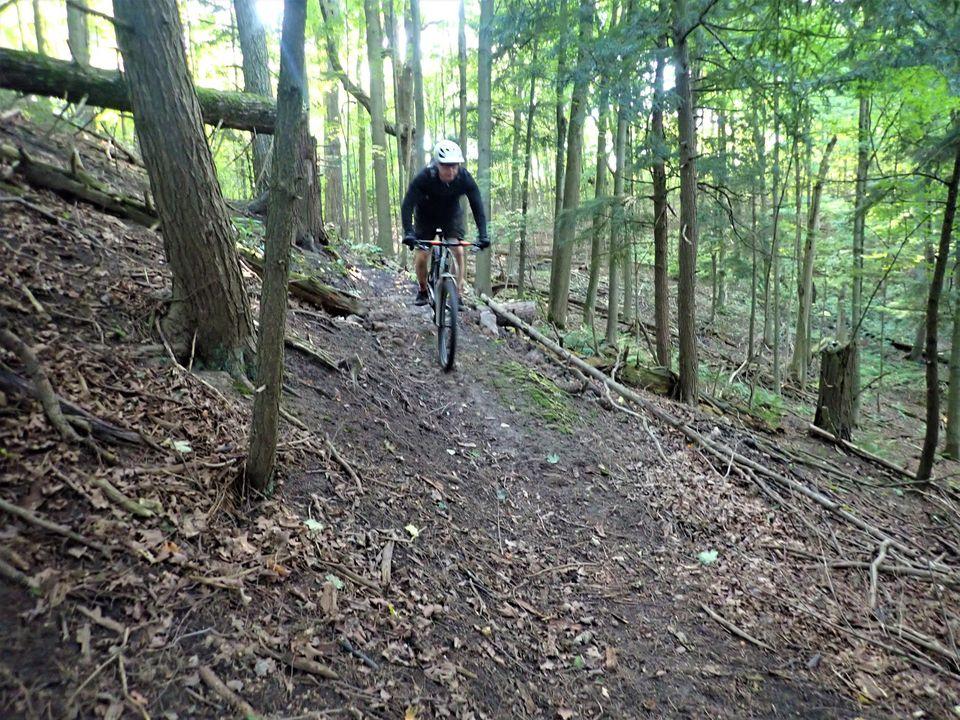 Local Trail Rides-119277777_2804229489821484_5922084961954195679_o.jpg