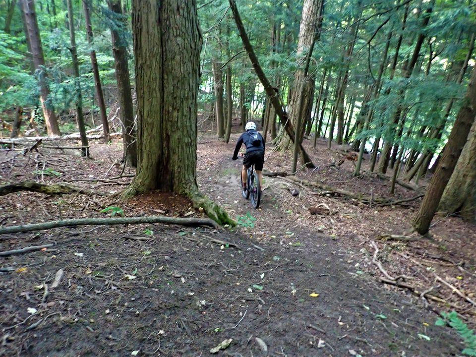 Local Trail Rides-119452883_2804231019821331_2600274989367966848_o.jpg