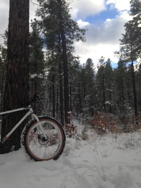 The NM Trail Pix Thread-12-16-14-fat-bike-ride-oak-flats.jpg