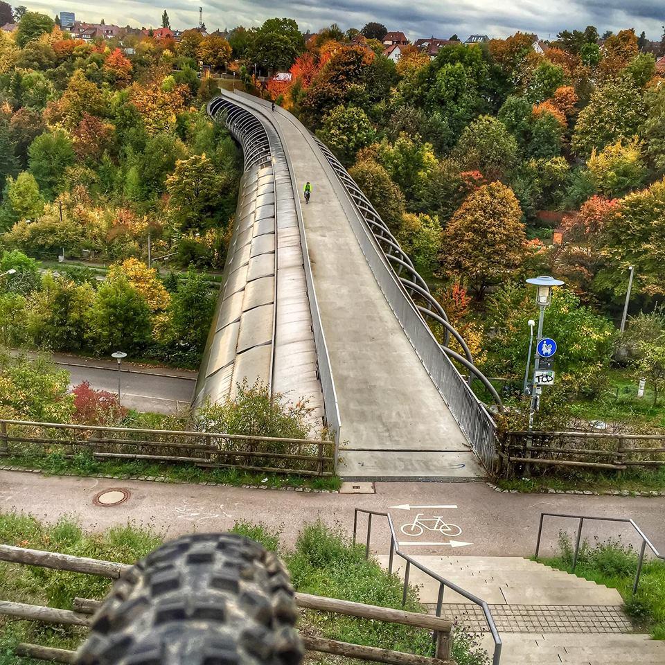 The NM Trail Pix Thread-12047200_10206147357181882_1251507976521631469_n.jpg