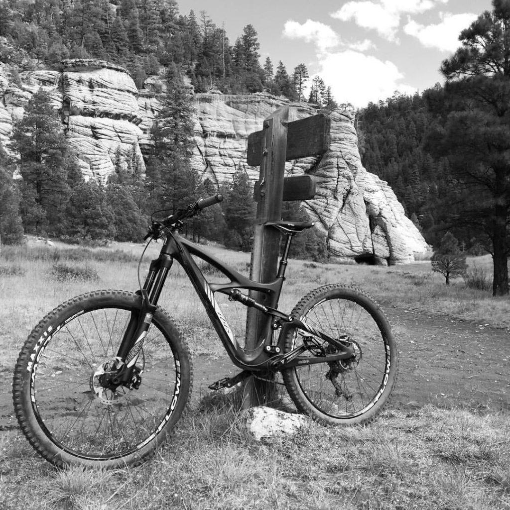 Bike + trail marker pics-12094833_10153778561170992_8757819914490156145_o-2.jpg