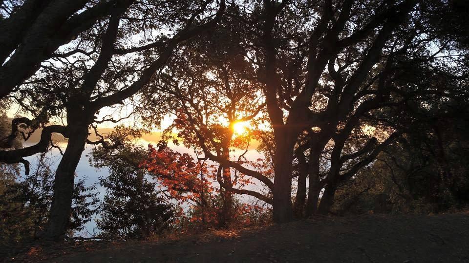 Sunrise or sunset gallery-12096441_10206546813903304_8578886632649351282_n.jpg