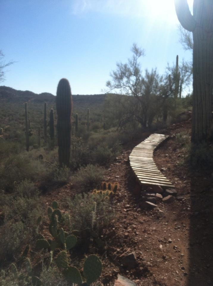 Norcal style trails in the desert?-12122012.jpg