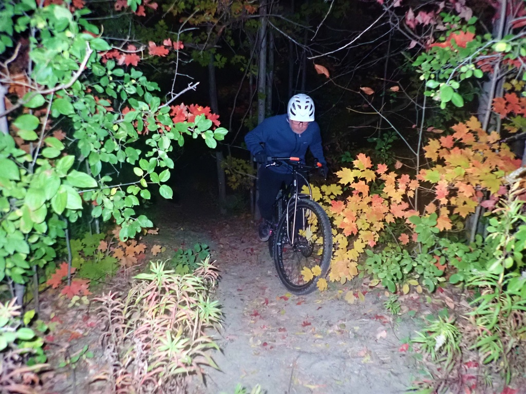 Local Trail Rides-121282128_2830342197210213_6374475980608360599_o.jpg