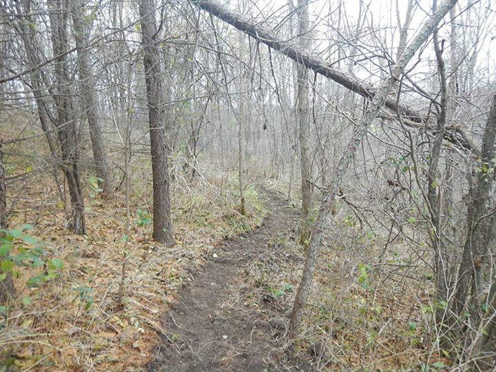 Local Trail Rides-12243338_767200753408935_2061533460896580623_n.jpg