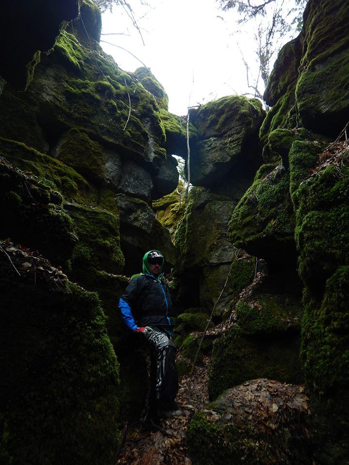 Local Trail Rides-12274553_784906978304979_9068418832610253686_n.jpg
