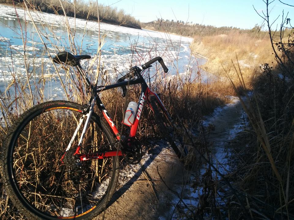 Post your 'cross bike-12294642_10156125839060276_8652825181564392111_n.jpg
