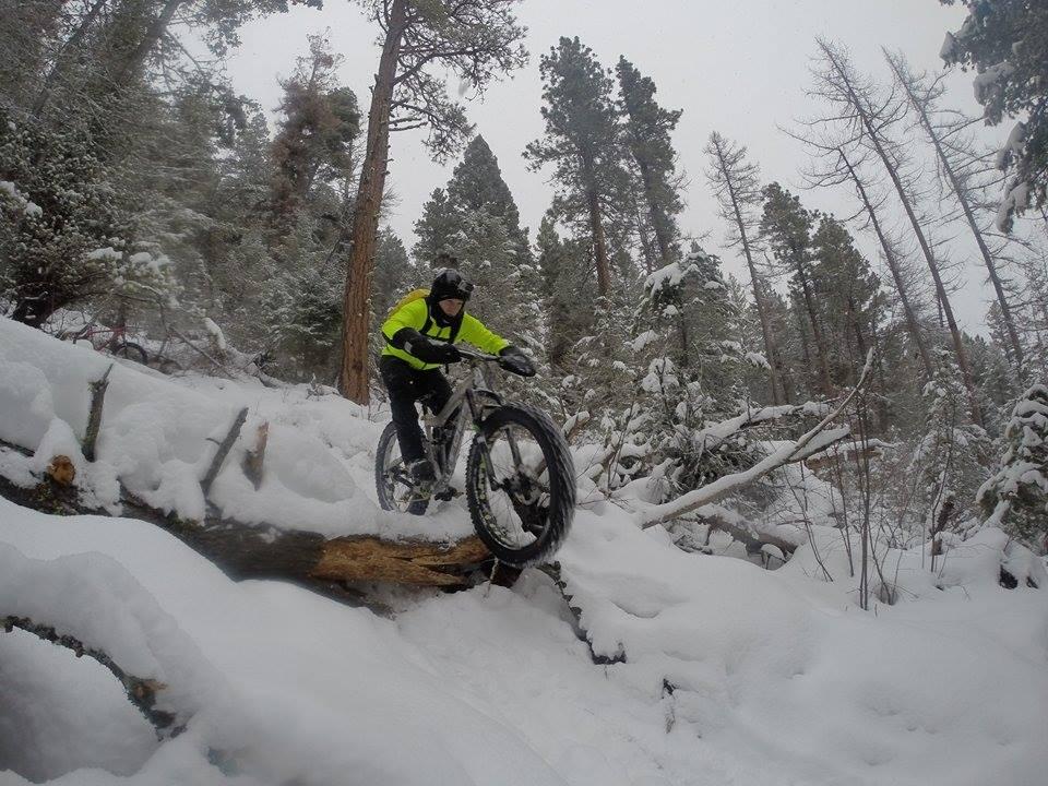 Droppers on the snow?-12399313_1211062222255113_839418792_n.jpg