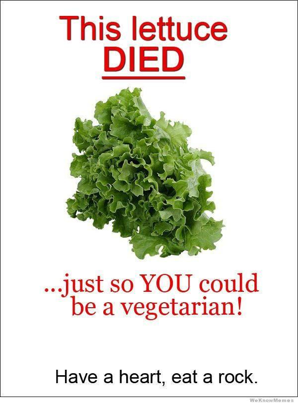Vegetarian and Vegan Passion-12494796_800444733416715_8596190652565073758_n.jpg