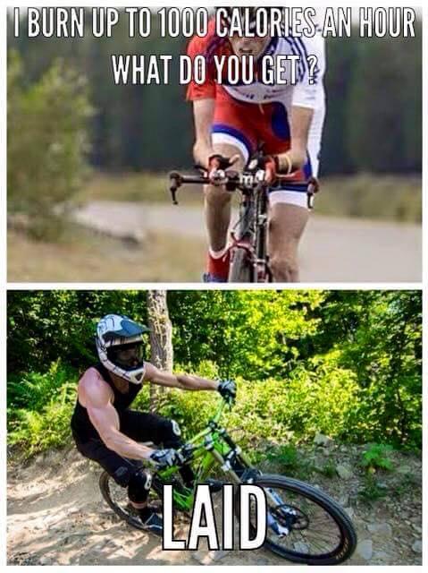 Cycling Memes-12647045_1305283616163811_1477309866862075219_n.jpg