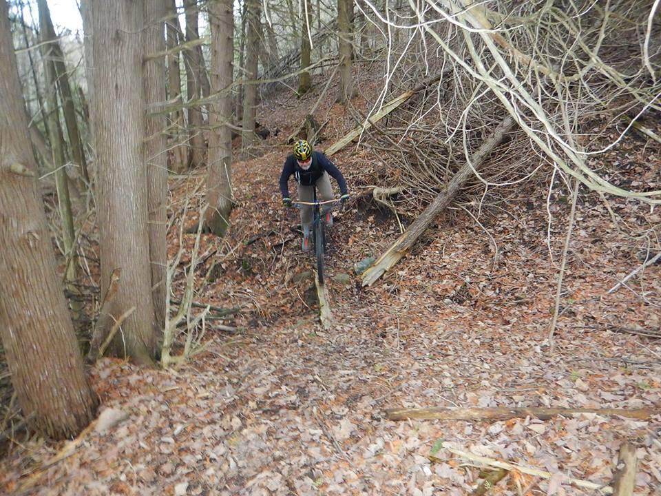 Local Trail Rides-12832378_823196434476033_7420462022249382977_n.jpg