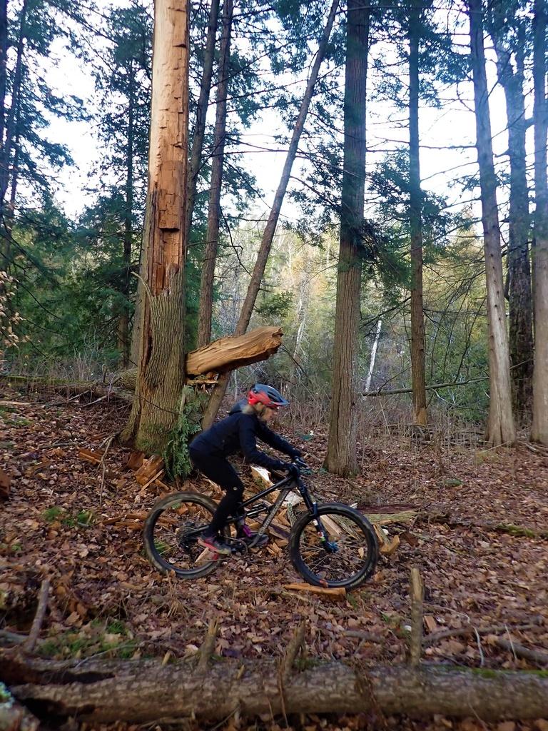 Local Trail Rides-128537583_2877599879151111_7827305819421499106_o.jpg