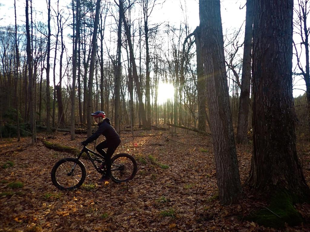 Local Trail Rides-128548864_2877590809152018_2014169272486075102_o.jpg