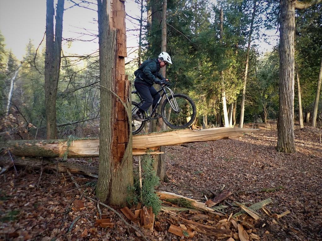 Local Trail Rides-128584110_2877585409152558_7852082202842017176_o.jpg