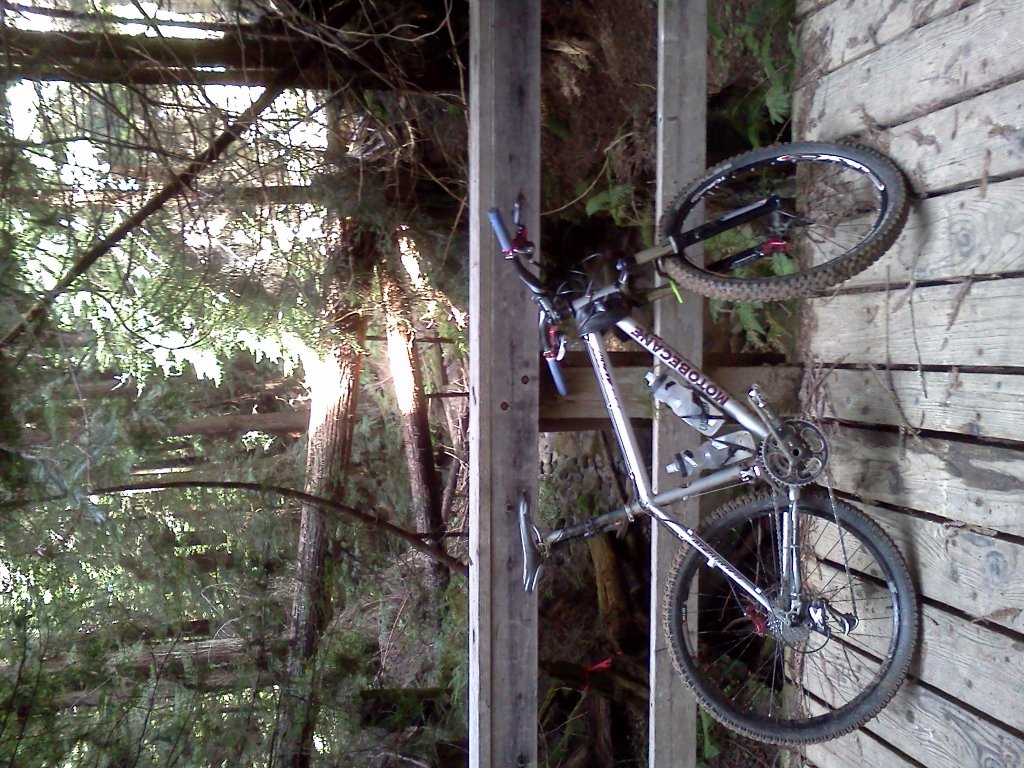 What did You do today on your mountain bike?-13-1.jpg