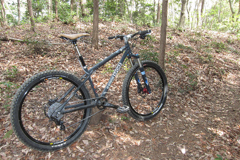 Anyone recognize this bike / frame?-130414b.jpg