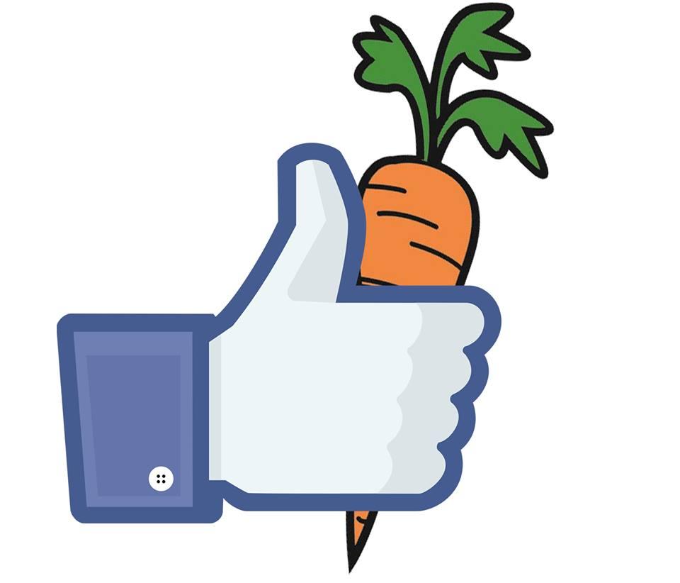 Vegetarian and Vegan Passion-13244689_10153455663227554_1283001653016843365_n.jpg