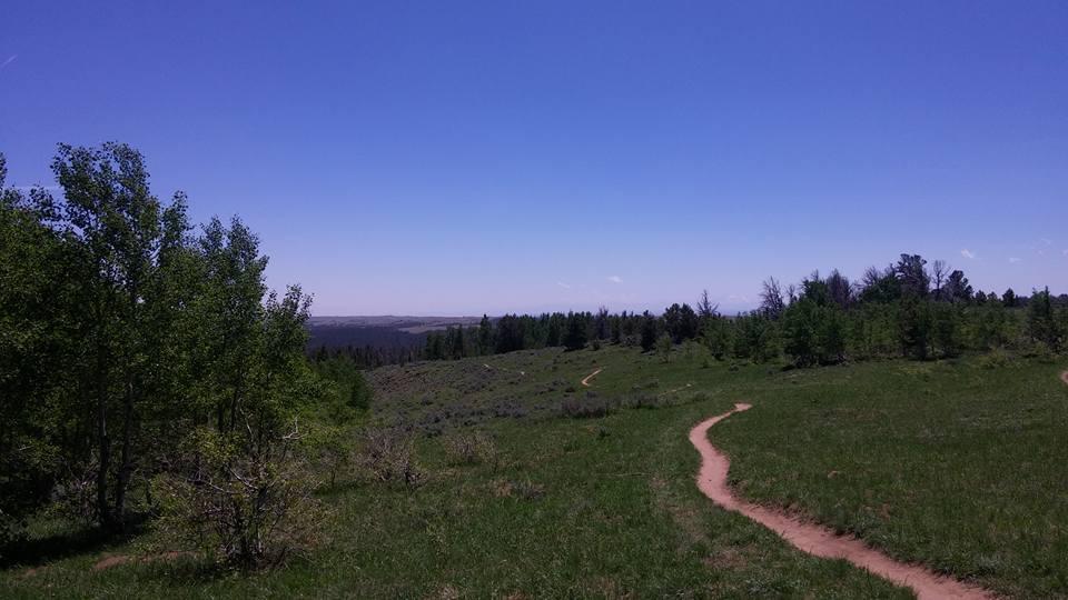 Trail Pics-13445265_10209860230971399_3877715398688677585_n.jpg