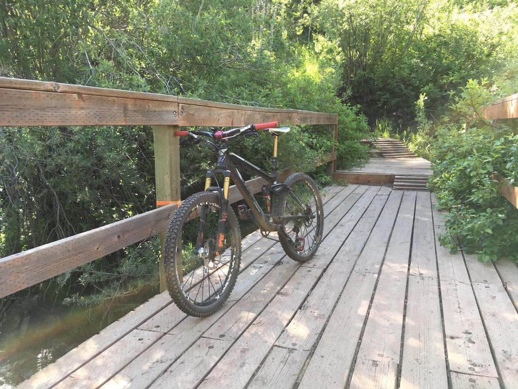 bike +  bridge pics-134c46bd-a928-4eb9-b28f-ffb40ceba9ee.jpg