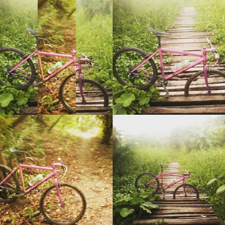 Trail Pics-13628400_213109915751392_1945500912_n.jpg