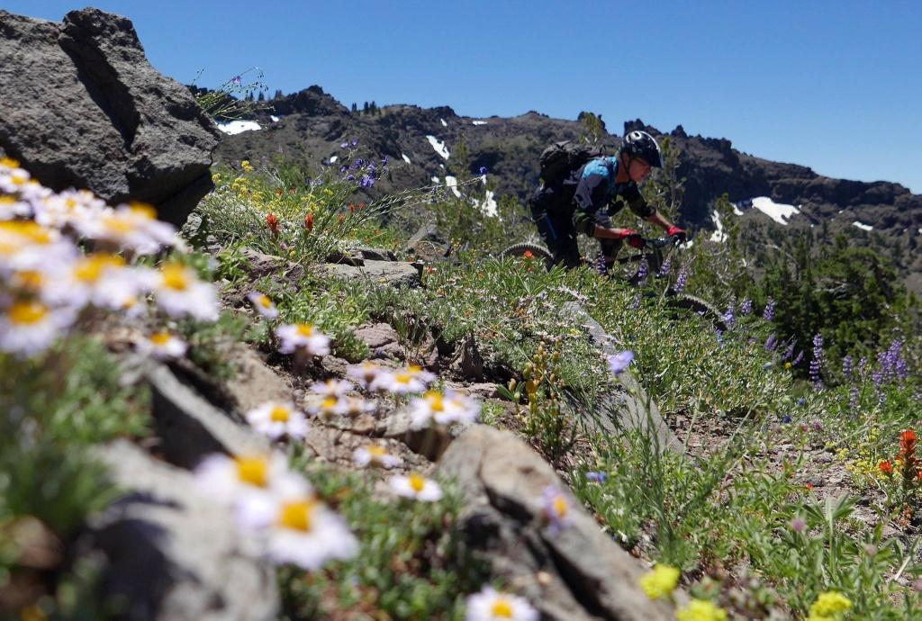 Thunder Mountain / Horse Canyon-13719587_1341814375847536_6300117816109437505_o.jpg