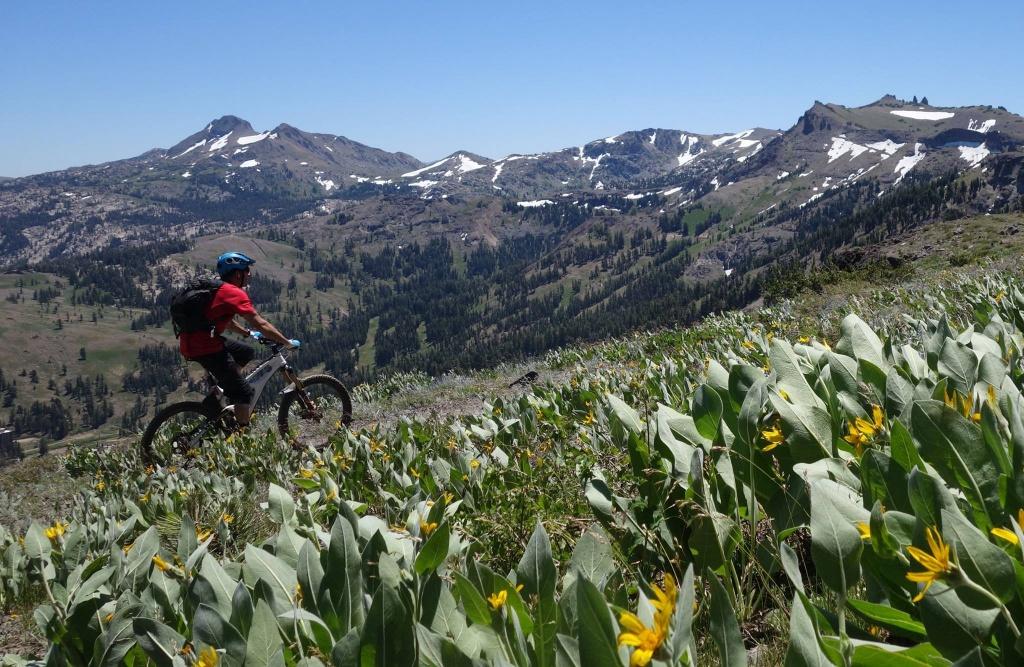 Thunder Mountain / Horse Canyon-13730819_1138041452935390_1717024141551537779_o.jpg