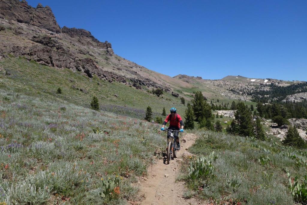 Thunder Mountain / Horse Canyon-13767417_1138041906268678_2859027056692326702_o.jpg