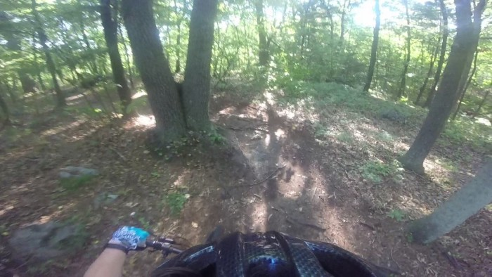 MA Trails Picture Thread-14-singletrack-roots.jpg