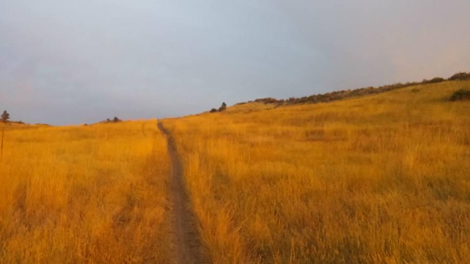 Trail Pics-14183830_10210492611900527_7988525094230789959_n.jpg