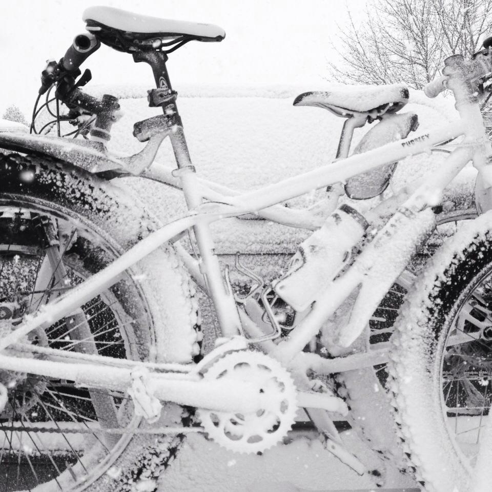 2014 Winter Fatbike Picture Thread-1424331_10152102142091869_977867998_n.jpg