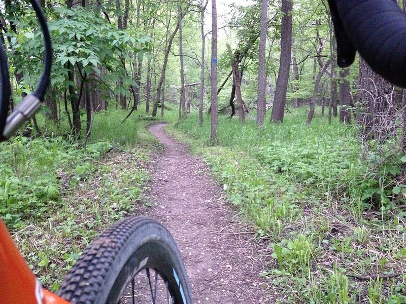 Cross Bikes on Singletrack - Post Your Photos-14256031651_46f897dc38_c.jpg