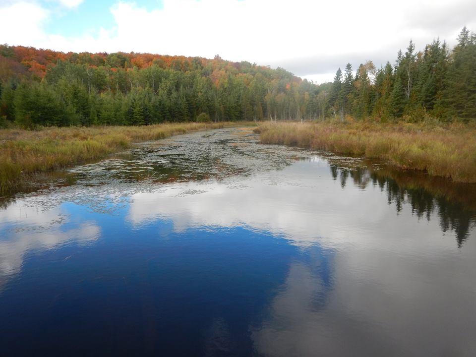 Bridges of Eastern Canada-14632943_1820263268218116_6314038139664242238_n.jpg
