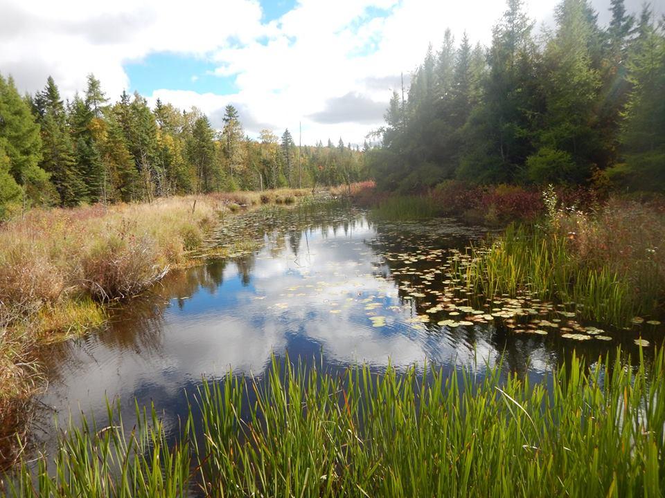 Bridges of Eastern Canada-14632950_1820263421551434_1484090333946839526_n.jpg