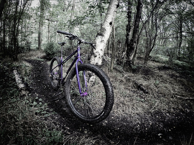 introducing the Stooge 29er from the UK-14868776852_4318b2186b_z.jpg