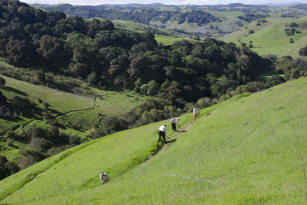 40 Dig BTC at Crockett Hills-150228btcebchills-9584.jpg