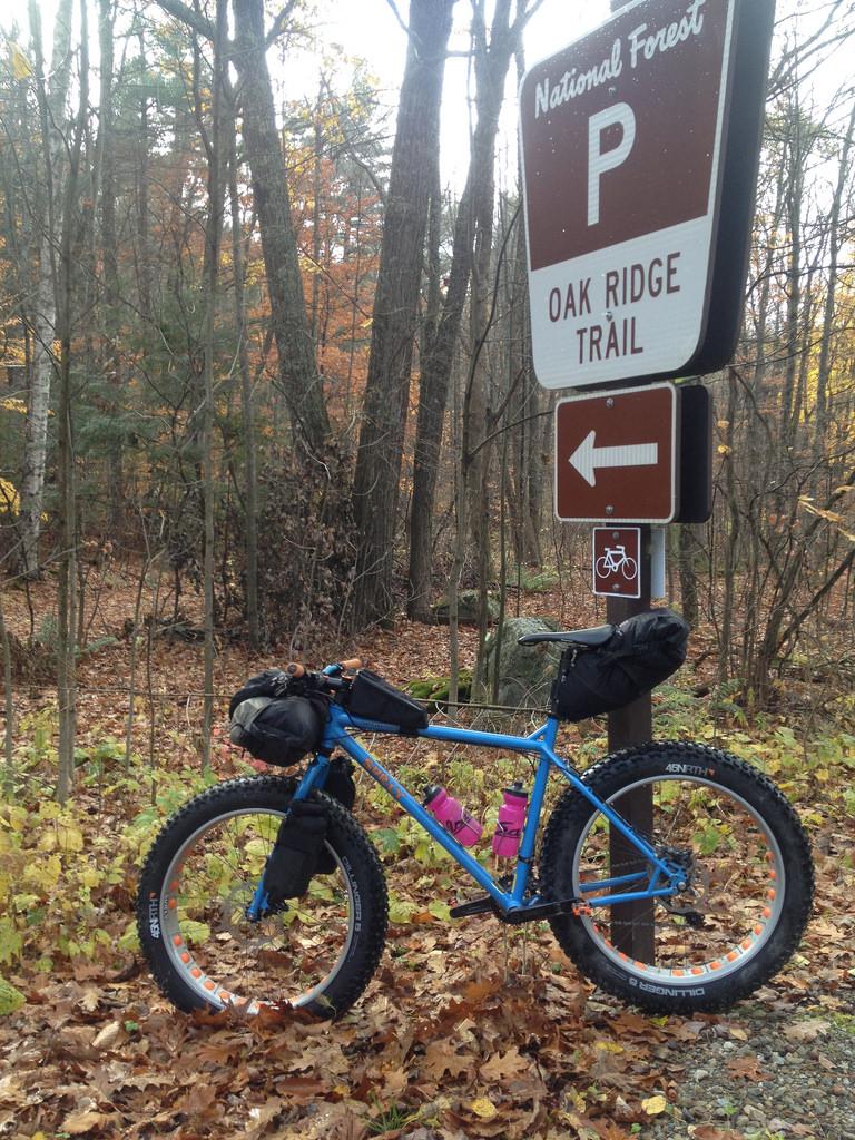 Post your Fat-Bikepacking setup!-15082298594_0bc2c88ce9_b.jpg