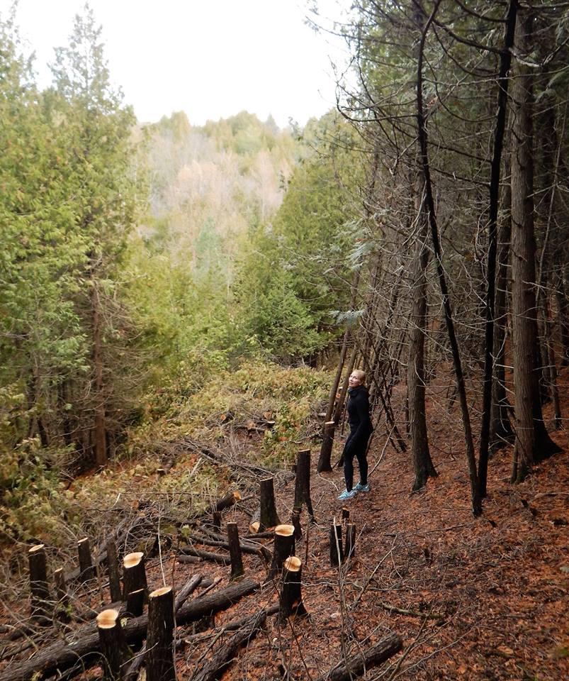 Local Trail Rides-15193538_1844709292440180_2397702515461749424_n.jpg